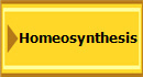 Homeosynthesis